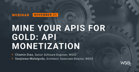 Mine Your APIs for Gold: API Monetization